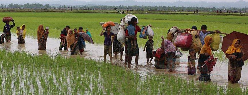 Bangladeş, binlerce Arakanlı Müslüman'ı adaya yerleştirecek