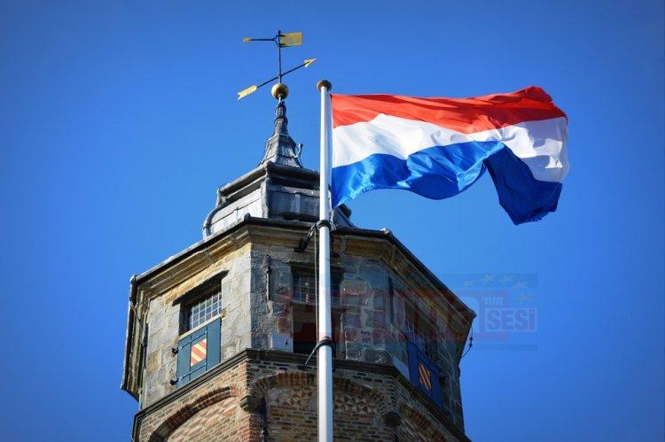 Hollanda'da tanıklık yapmak istemeyen muhabire gözaltına alındı