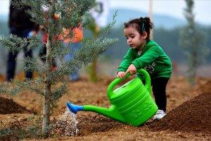 16 yılda 30 bin futbol sahası kadar toprak kurtarıldı